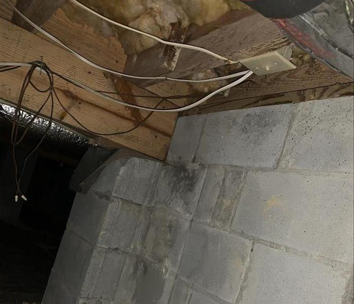 Dark moldy crawl space with grey concrete piers